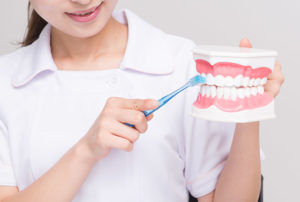 歯の掃除指導